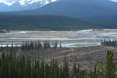 Athabaska river I think