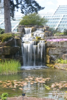 The water garden at Kew
