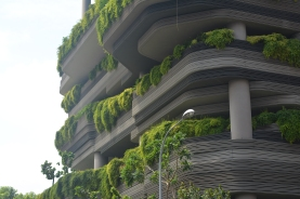 Beautification of buildings