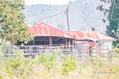 Rustic farm buildings