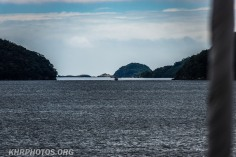 Doubtful Sound (14 of 68)