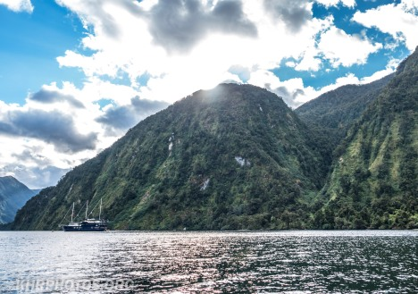 Doubtful Sound (45 of 68)