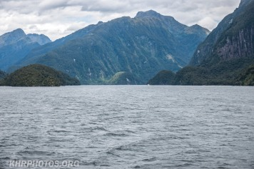 Doubtful Sound (7 of 68)
