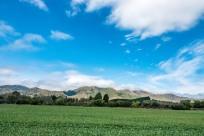Arthurs Pass, Kaikoura & Christchurch (16 of 62)