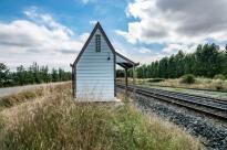 Arthurs Pass, Kaikoura & Christchurch (18 of 62)