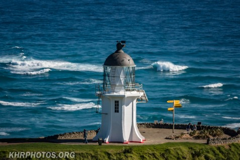 Cape Reinga (12 of 47)