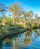 Macintyre River looking at Queensland